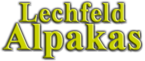 Lechfeld Alpakas Logo